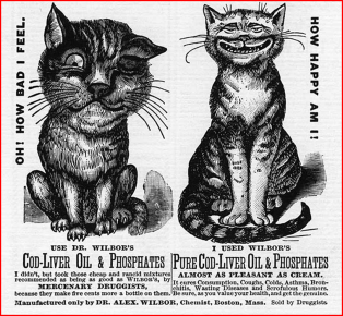 cod-liver-cats