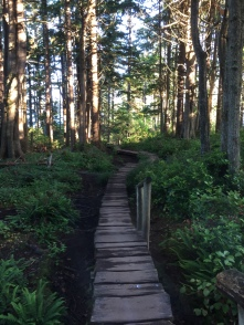 Boardwalk leading to Cape Flattery Point