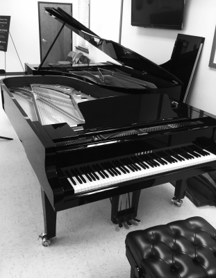 One of the beautiful pianos - a Yamaha courtesy of Classic Pianos, Portland